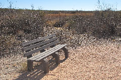 Murray Springs Bench