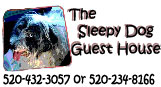 Sleep Dog Guest House